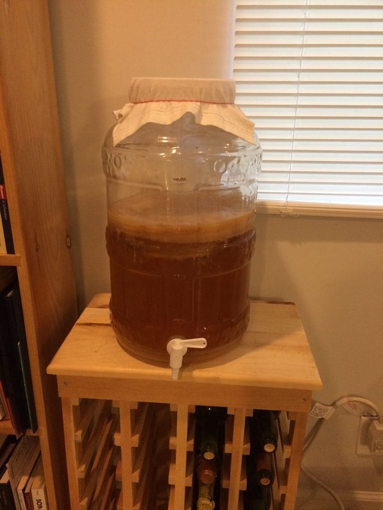 Kombucha Brewing in Big Mouth Bubbler